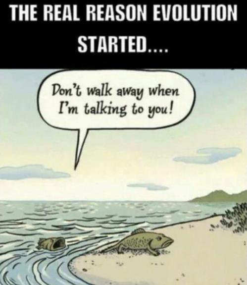 The real reason evolution started...