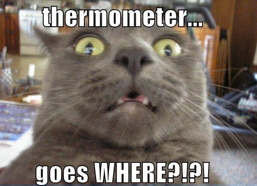 thermometer goes where....