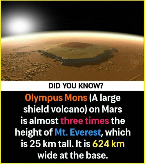 Mars has largest  volcanoes 🗻