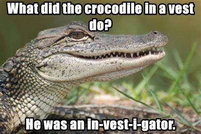 What did the crocodile in a vest do?