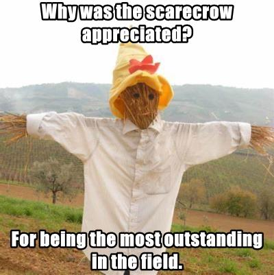 Why was the scarecrow appreciated?