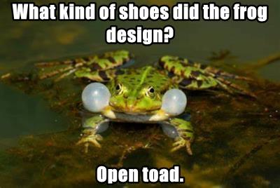 What kind of shoes did the frog design?