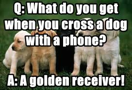 Q: What do you get when you cross a dog with a phone?