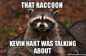 that racoon kevin hart was talking about....
