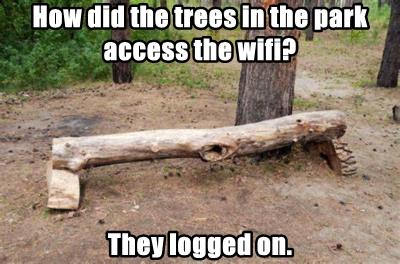 How did the trees in the park access the wifi?