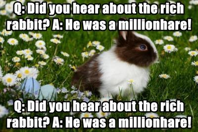Q: Did you hear about the rich rabbit? A: He was a millionhare!