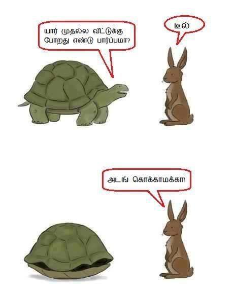 Tortoise vs Rabbit meme