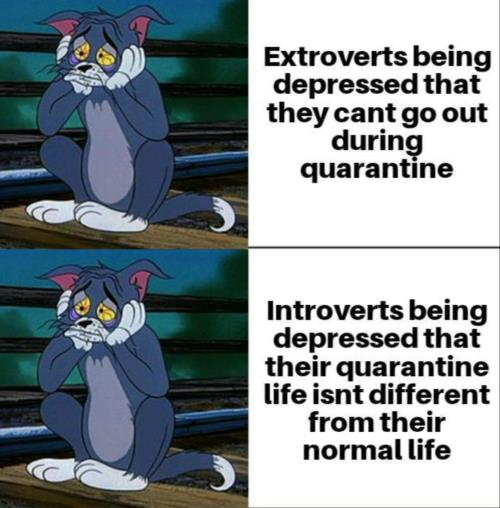 Introverts vs. Extroverts
