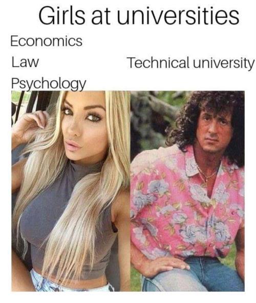 Girls at university meme