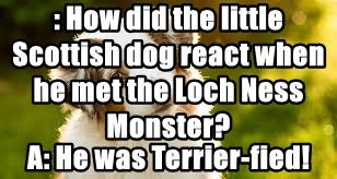 : How did the little Scottish dog react when he met the Loch Ness Monster?