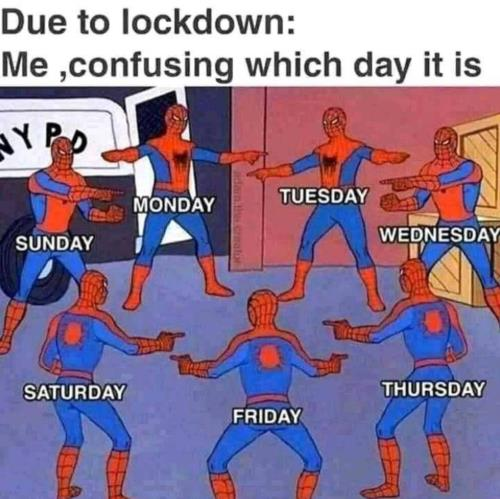 which day it is