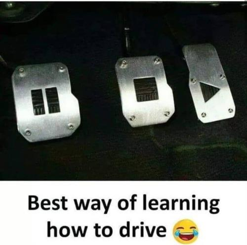 Best way to learn driving 🤣
