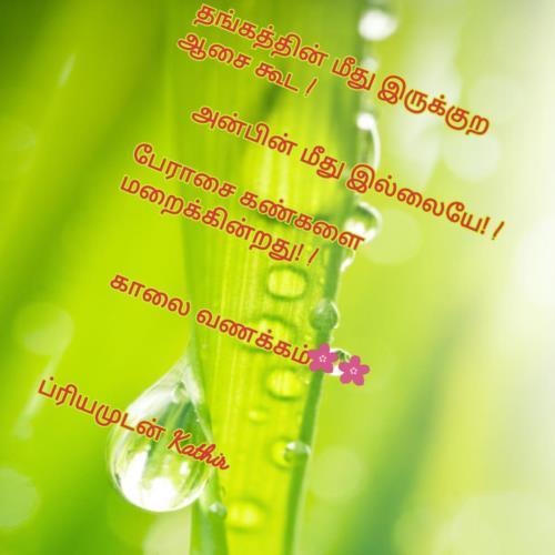 காலை வணக்கம்  கதிர் 9171765870