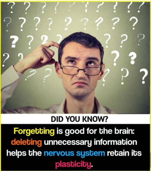 Sometimes  forgetting  is good for brain🧠