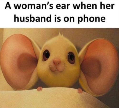 women's ear