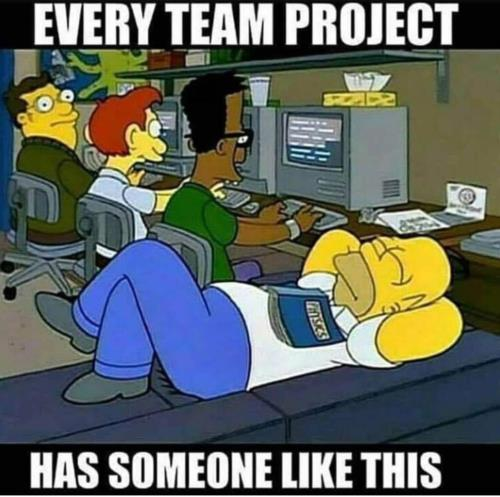 Every team project has this one🤣😂