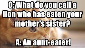 Q: What do you call a lion who has eaten your mother's sister?