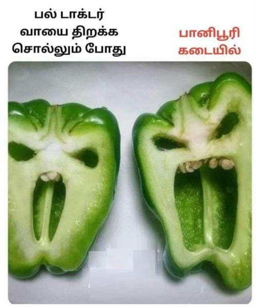 capsicum comedy
