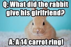 Q: What did the rabbit give his girlfriend?