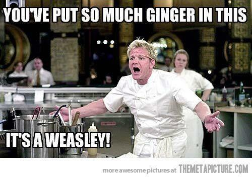 YOU PUT SO MUCH GINGER IN THAT...