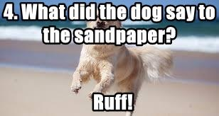 4. What did the dog say to the sandpaper?