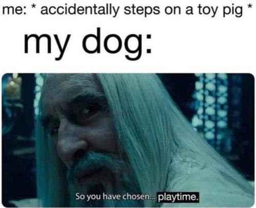 playtime...