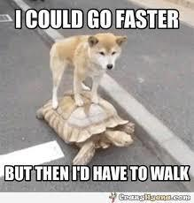 i could go faster but then i would have to walk