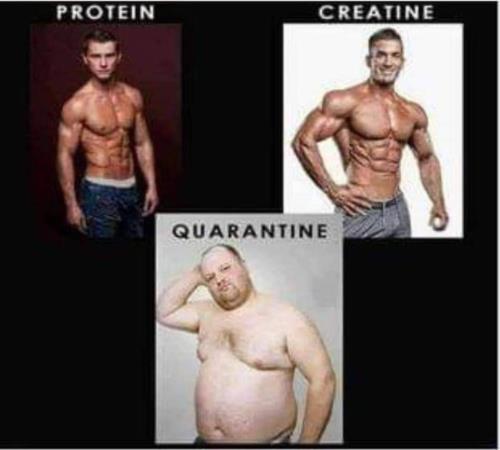 Body building meme