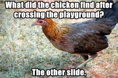 What did the chicken find after crossing the playground?