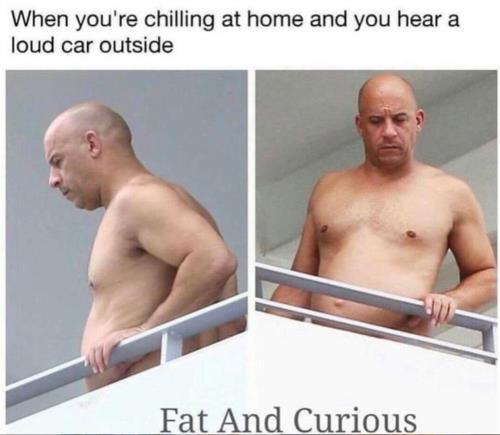 fat n curious