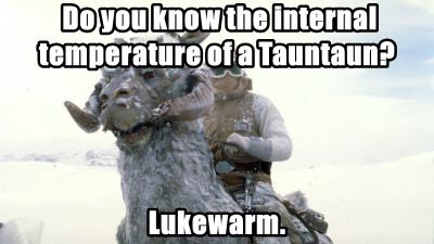 Do you know the internal temperature of a Tauntaun?