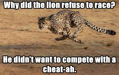 Why did the lion refuse to race?
