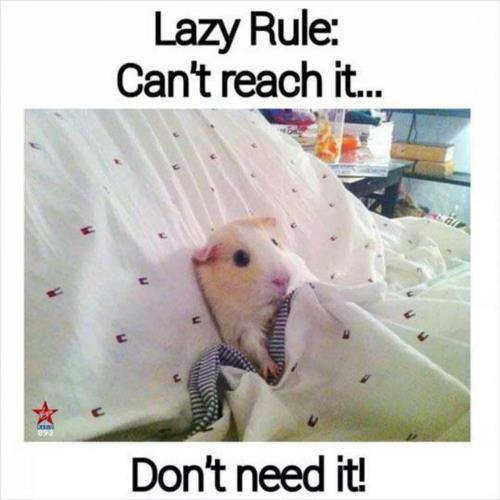 lazy rule, cant reach it....