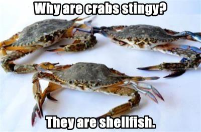 Why are crabs stingy?