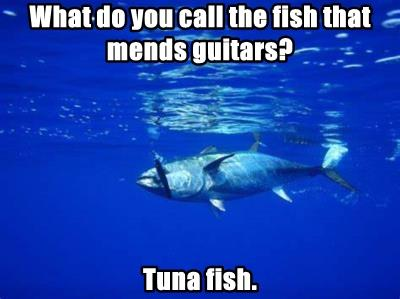 What do you call the fish that mends guitars?