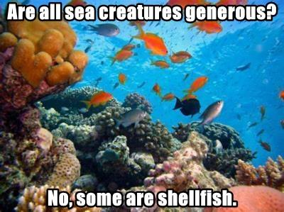 Are all sea creatures generous?