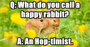 Q: What do you call a happy rabbit?