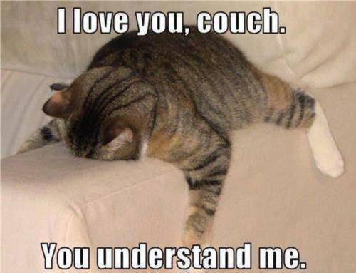 i love you couch,you understand me